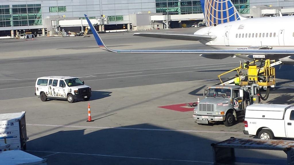 United's Pet Safe van, coming to drop off Rockit.